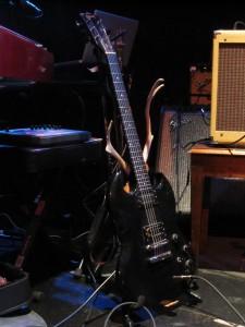 Gesundheit's antler-adorned guitar